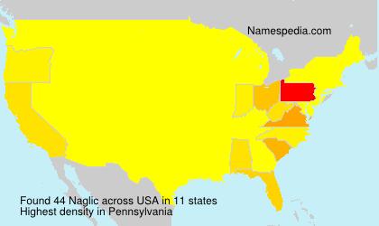 Surname Naglic in USA