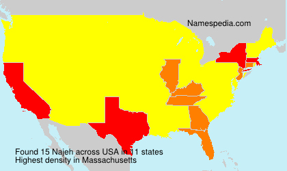 Surname Najeh in USA