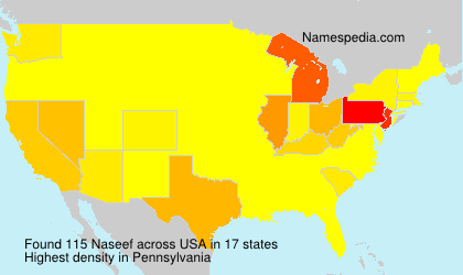 Surname Naseef in USA