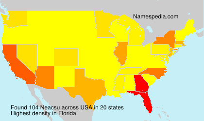 Neacsu - USA