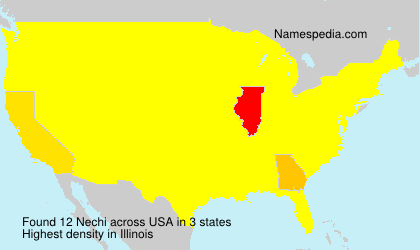 Surname Nechi in USA