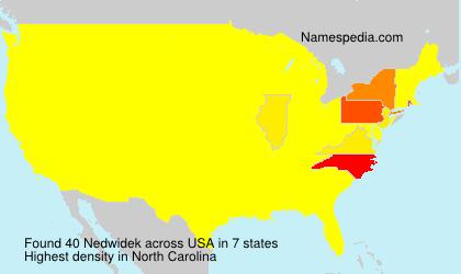 Familiennamen Nedwidek - USA