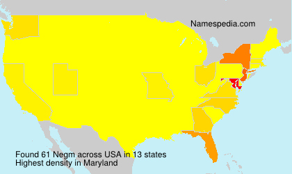 Surname Negm in USA