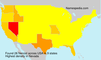 Surname Nenzel in USA