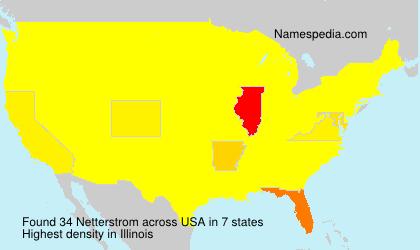 Familiennamen Netterstrom - USA
