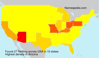 Nettling - USA