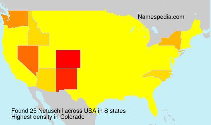 Netuschil