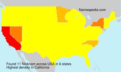 Surname Nicknam in USA
