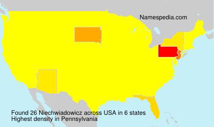 Surname Niechwiadowicz in USA