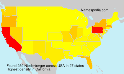 Surname Niederberger in USA