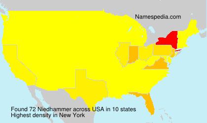 Niedhammer - USA