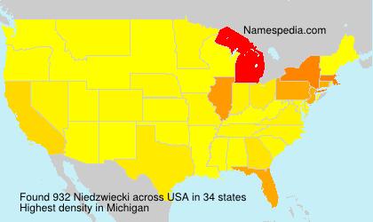 Surname Niedzwiecki in USA