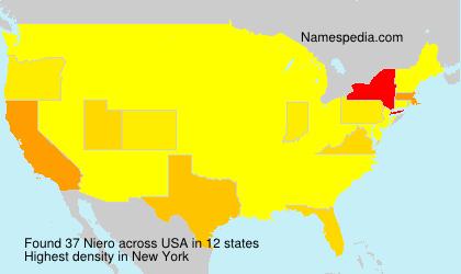 Surname Niero in USA