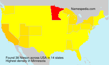 Surname Nieson in USA