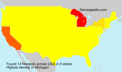Surname Niespolo in USA