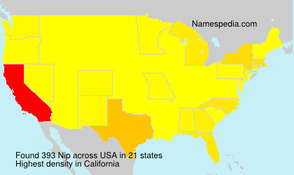 Surname Nip in USA