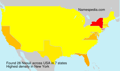 Surname Nsouli in USA