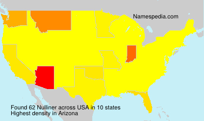 Surname Nulliner in USA