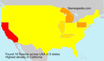 Surname Nyeche in USA