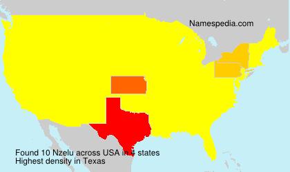 Familiennamen Nzelu - USA