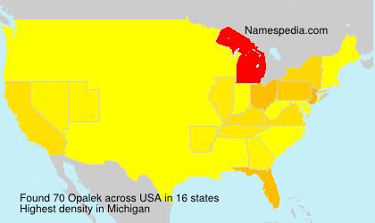 Familiennamen Opalek - USA