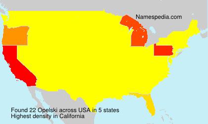 Familiennamen Opelski - USA