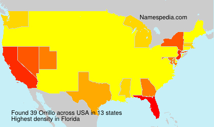 Surname Orrillo in USA