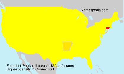 Surname Pagliaruli in USA