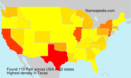 Surname Palit in USA