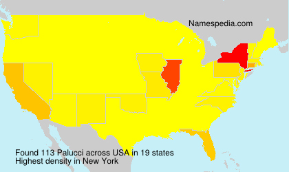 Surname Palucci in USA