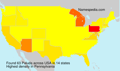 Surname Paluda in USA