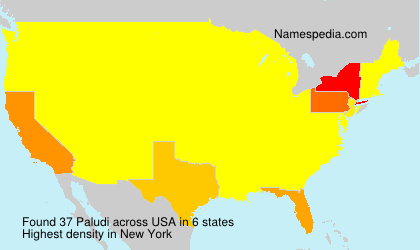 Surname Paludi in USA