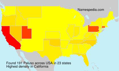 Familiennamen Paluso - USA