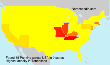 Familiennamen Pankins - USA