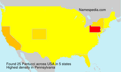 Surname Pantucci in USA
