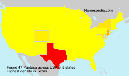 Surname Pantusa in USA