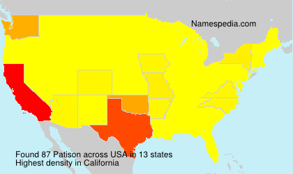 Surname Patison in USA