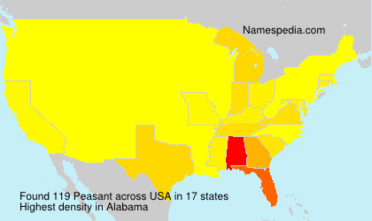 Surname Peasant in USA
