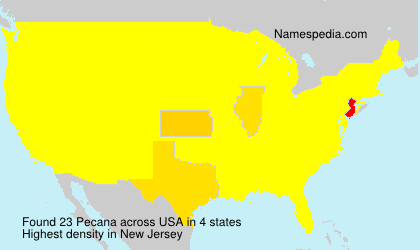 Surname Pecana in USA