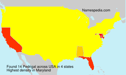 Surname Pedrigal in USA