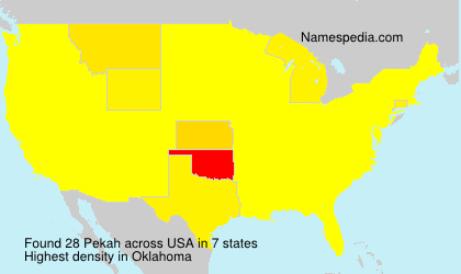 Surname Pekah in USA
