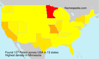 Surname Pelant in USA