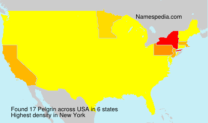 Surname Pelgrin in USA