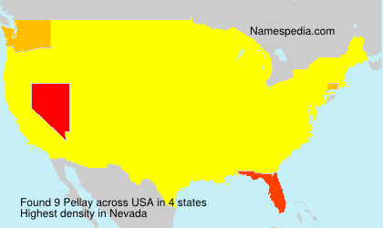 Surname Pellay in USA