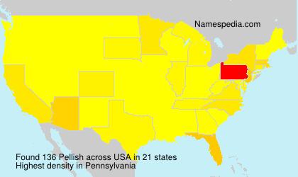 Familiennamen Pellish - USA