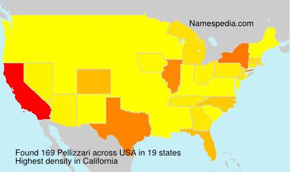 Surname Pellizzari in USA