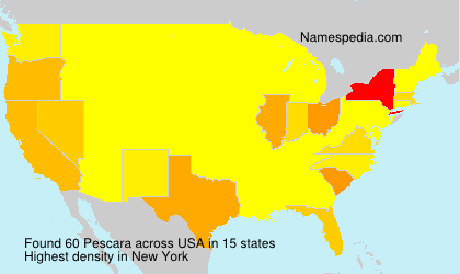 Surname Pescara in USA