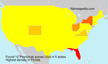 Surname Pesnichak in USA