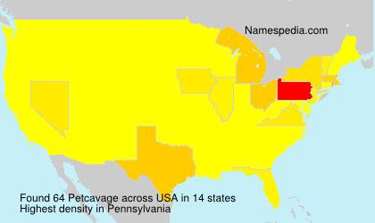 Petcavage - USA