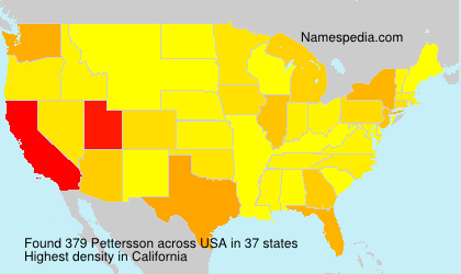 Surname Pettersson in USA